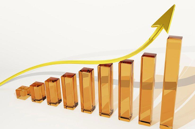 SME Financing & Credit Monitoring